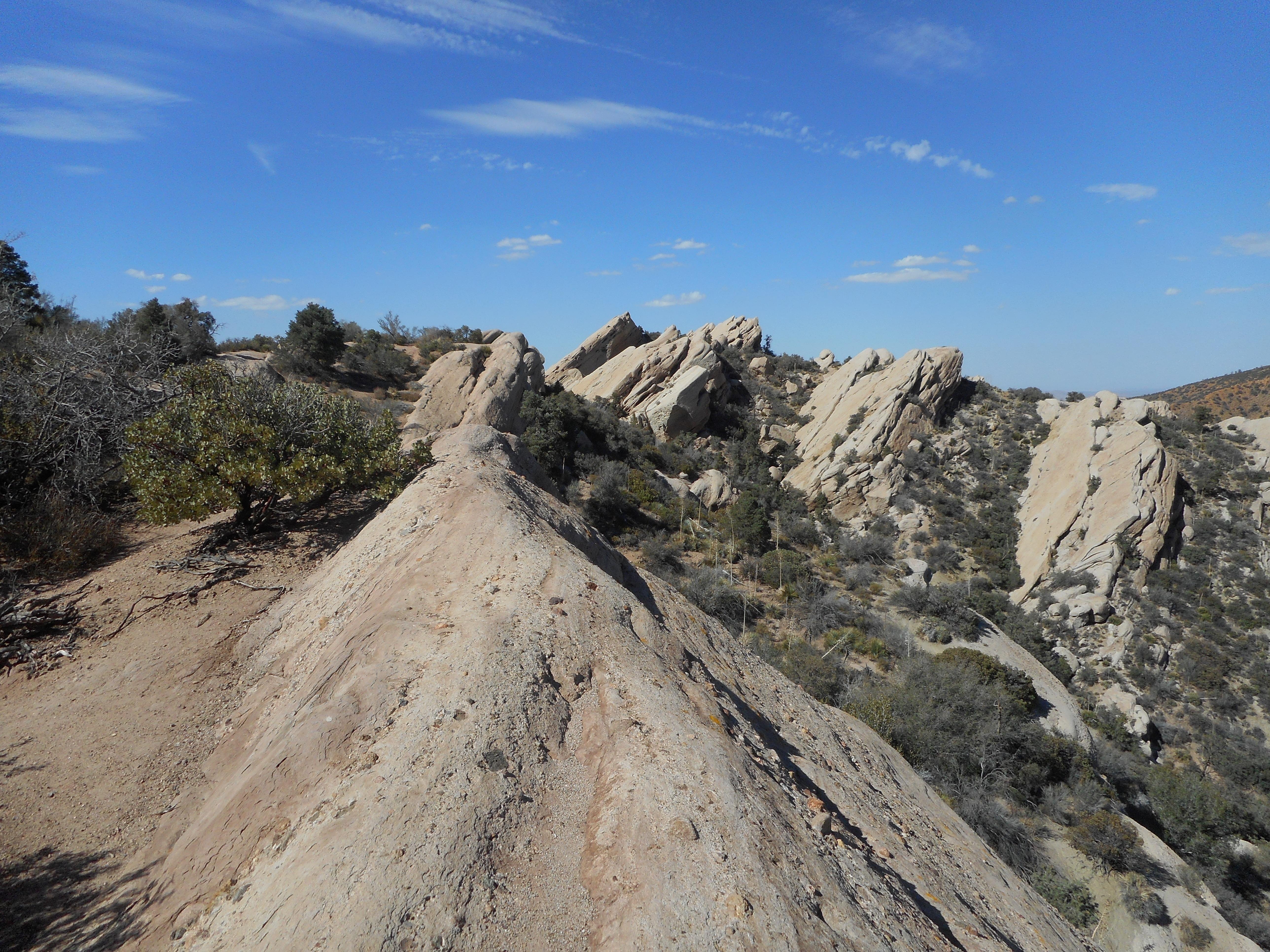 Mojave desert natural mojave