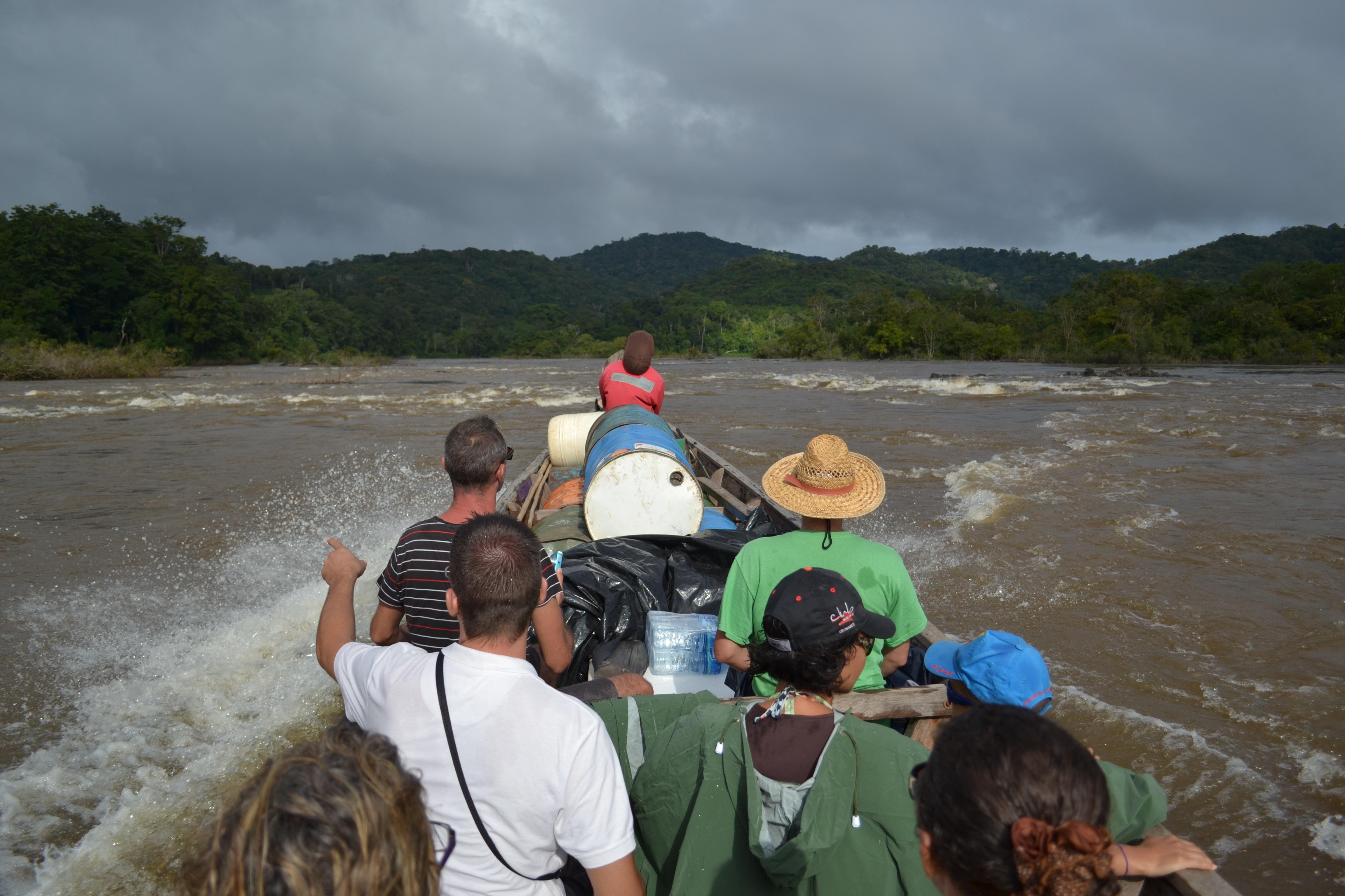 Guyana suriname nature