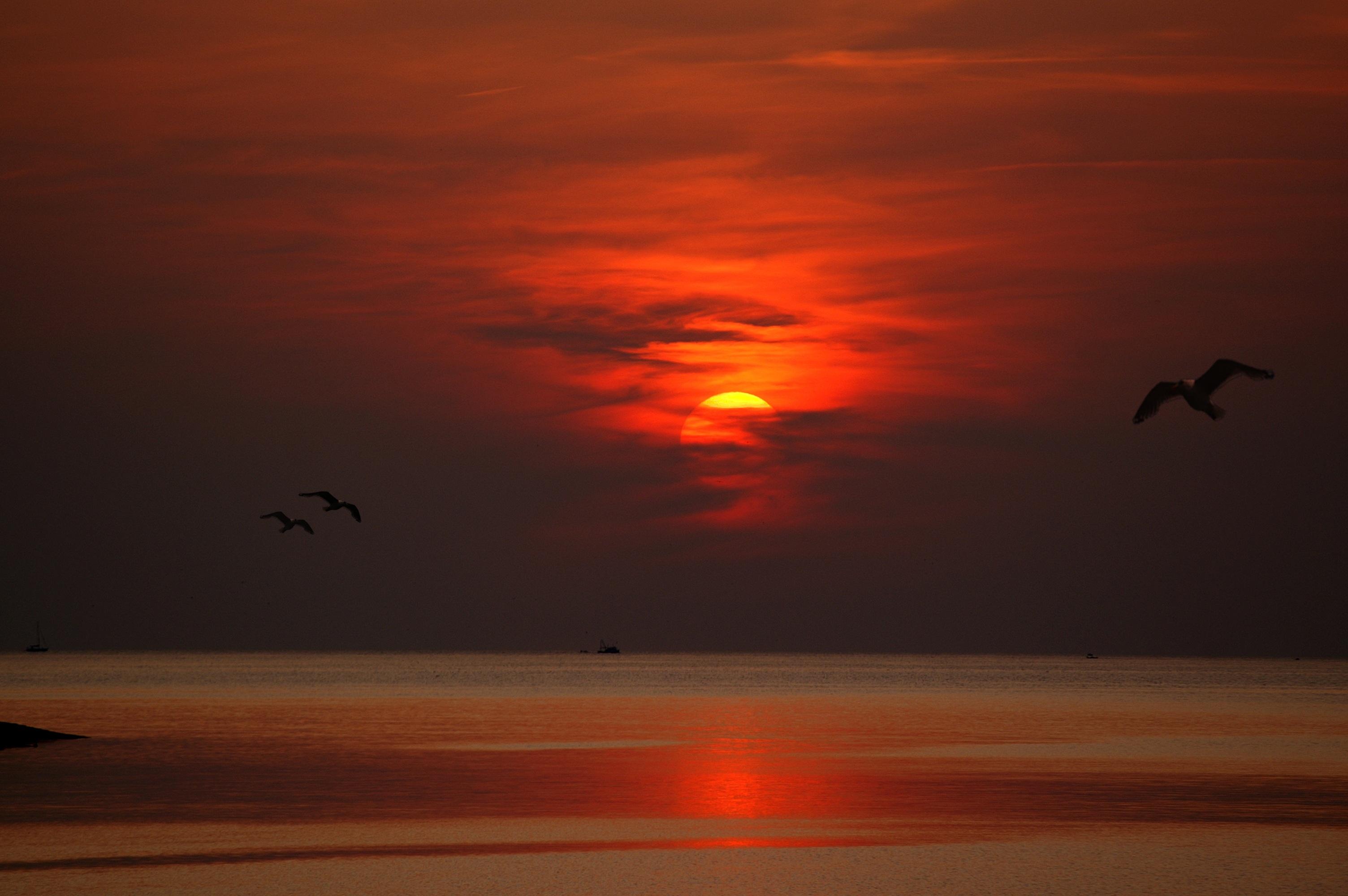 Evening sun croatia