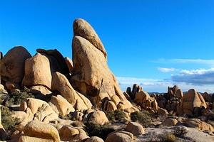 Landscape scenery mojave desert