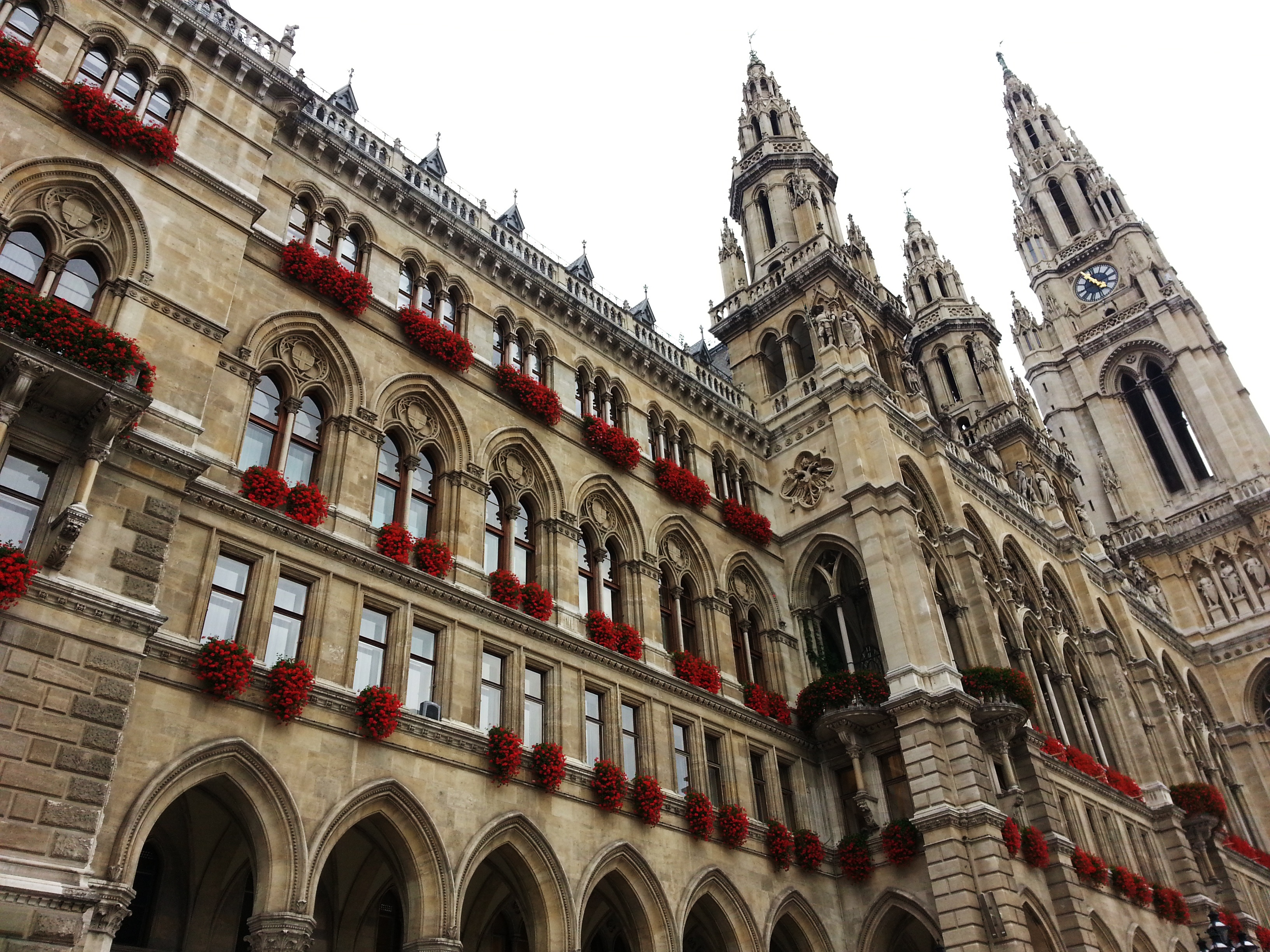 Vienna city hall building historical