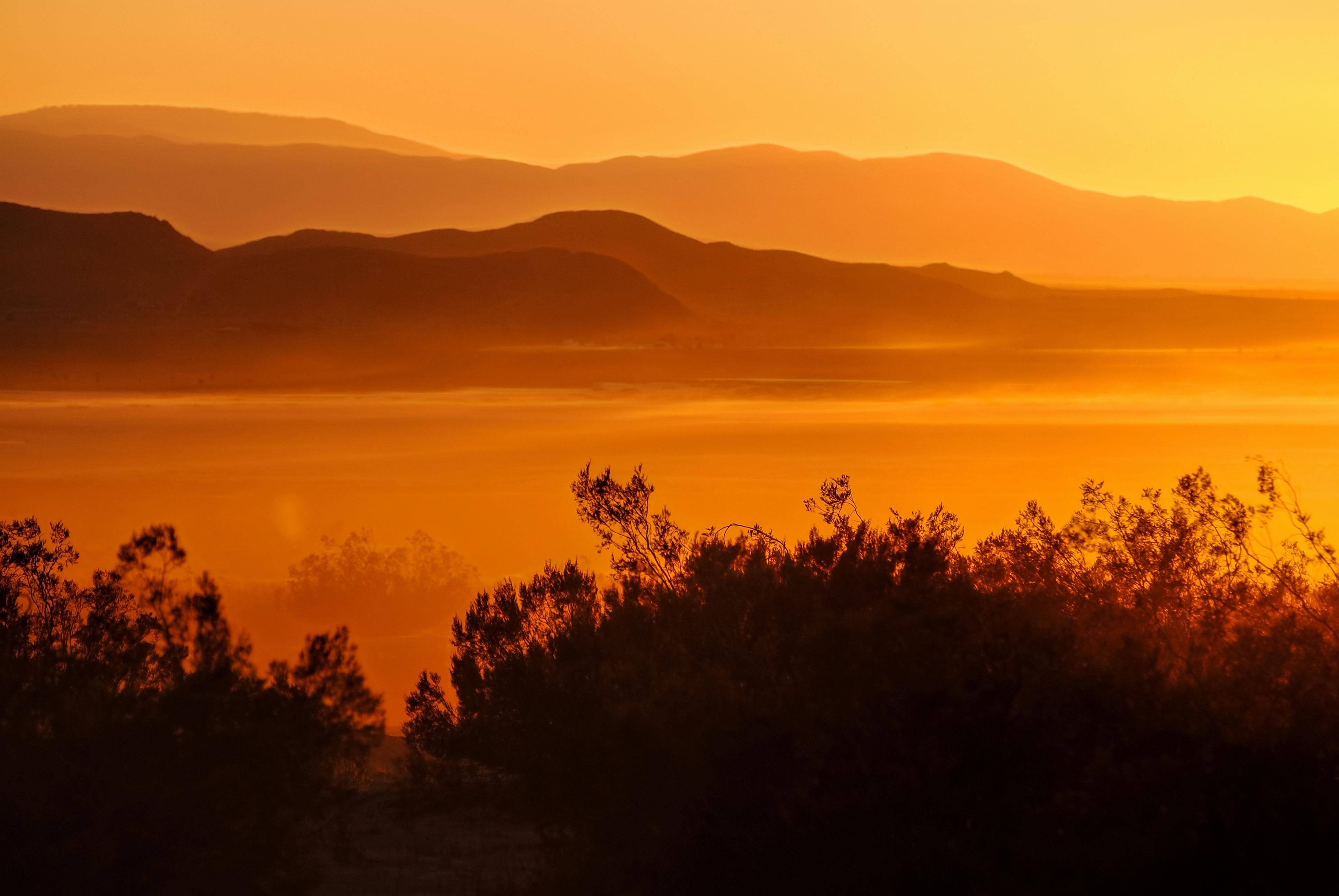 Desert california mojave