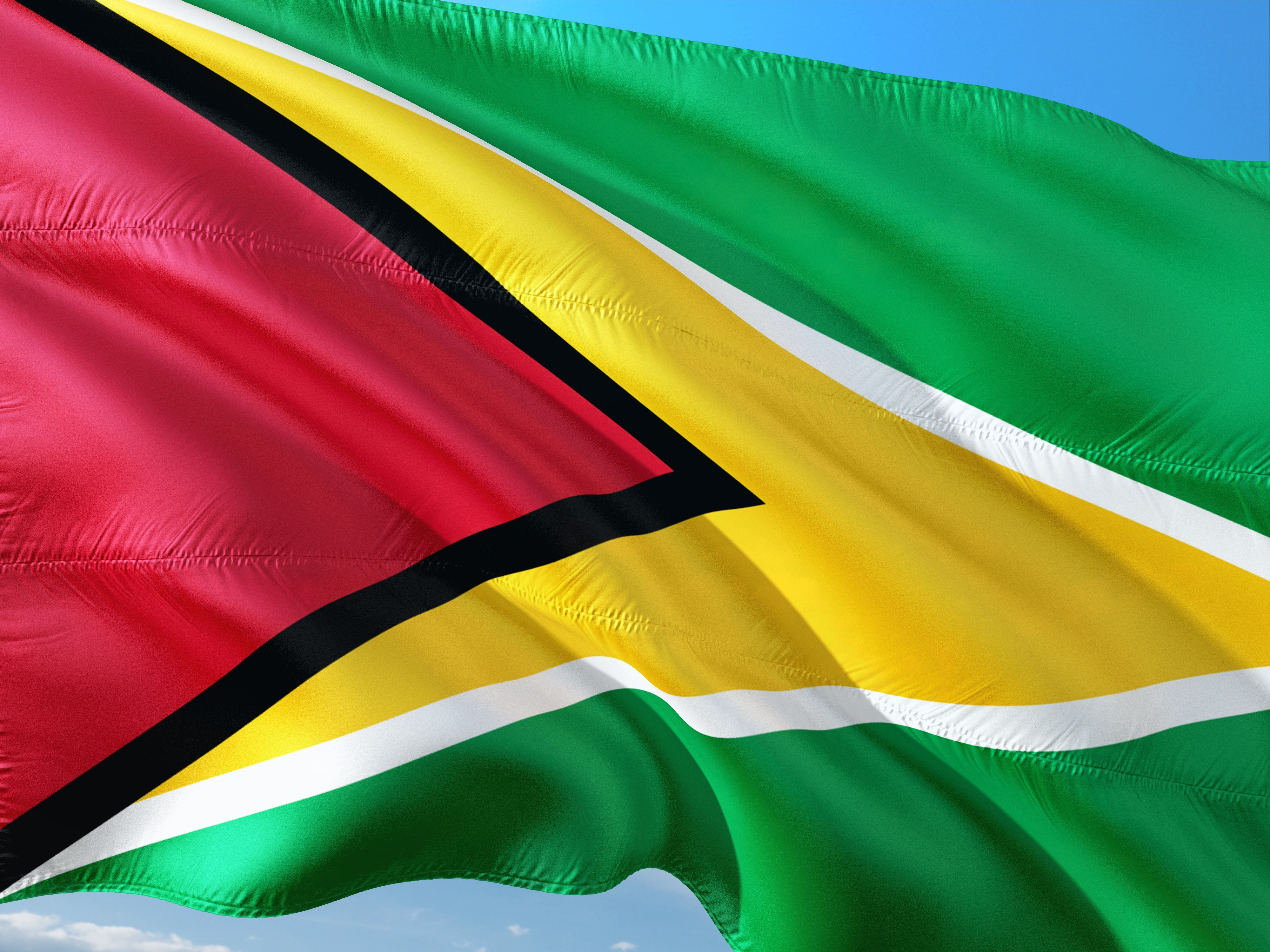 Flag guyana south america